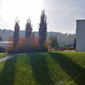 Zahrada u vily ve Dvoře Králové nad Labem